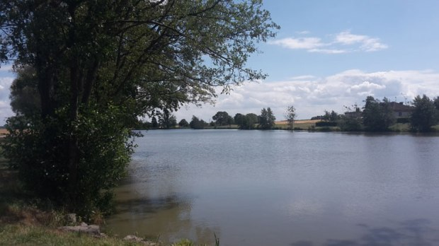 Altmuehlquelle-Hornau