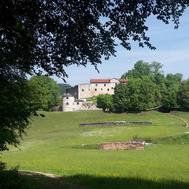 Burg-Moernsheim