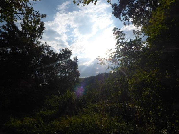 wanderlust-ausblick-altmuehltal-breitenfurt