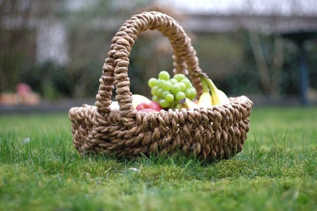 garden-2124757_640