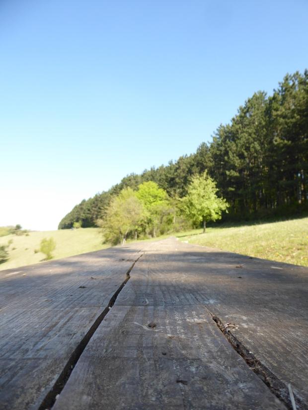 Naturlehrpfad-Obereichstaett-Holzbank-1