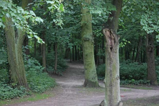 Schuhkurama-Park