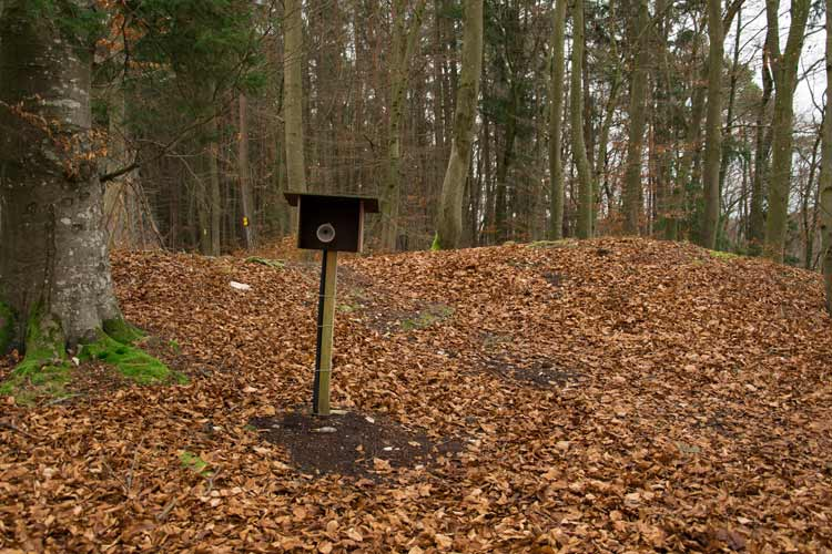 muehlbachquelle-dietfurt-wanderweg-kinderstation