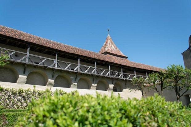 Burg Harburg Garten