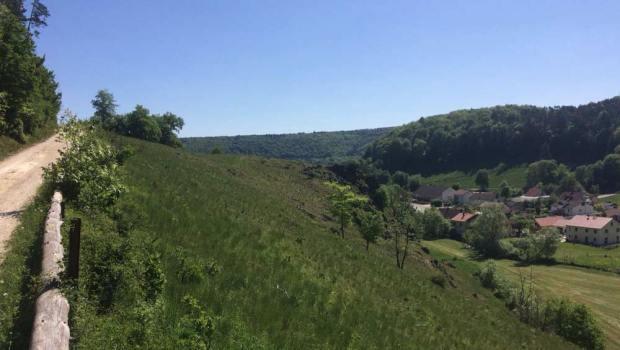 Mörnsheim Rundweg 1 Schäfchenweg
